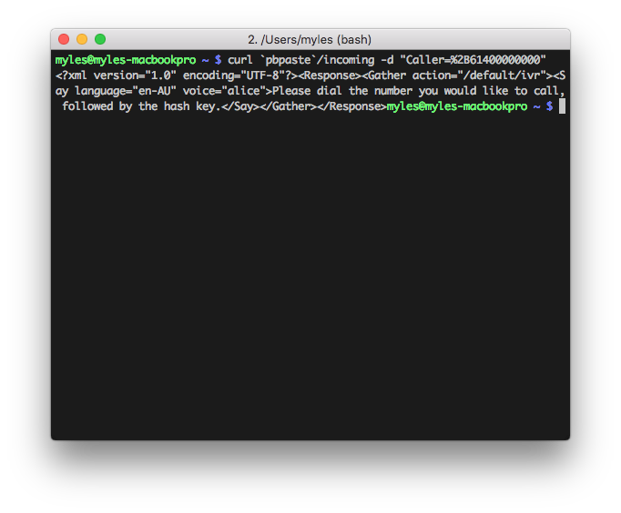 Testing the endpoint in the command line